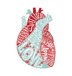 Lettering in heart vector image