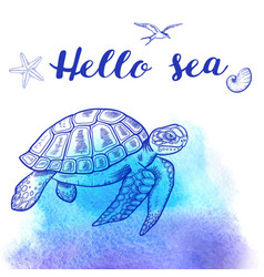 Sea turtle on a blue background vector