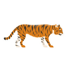 Tiger action wildlife animal danger mammal fur vector