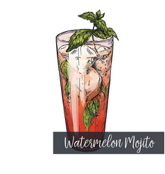 Watermelon mojito cocktail vector