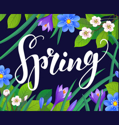 spring text on floral background vector image
