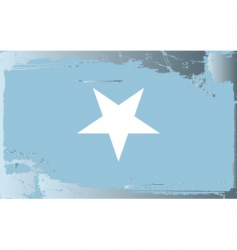 Somalia national flag vector
