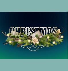 christmas coniferous design vector image
