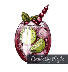 Cranberry mojito with lime and berries vector