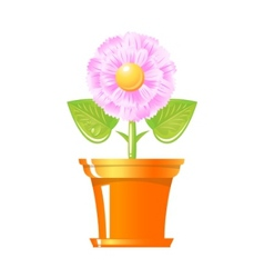 pink flower in pot vector image