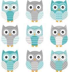 Aqua grey cute owl collections vector
