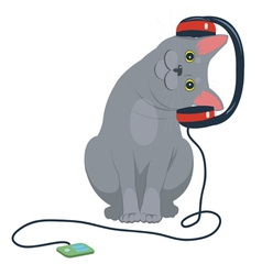 Cat music headphones vector
