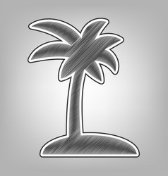 coconut palm tree sign pencil sketch vector image