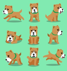 Cartoon character alabai dog poses vector