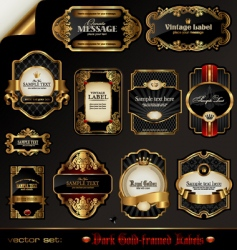 Black and golden labels vector
