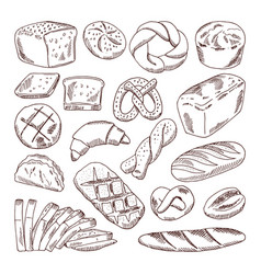 different types of fresh bread hand drawn vector image vector image