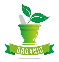 Pharmacy mashed drugs organic product icon vector