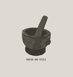 mortar and pestle in a wreath of spices and herbs vector image
