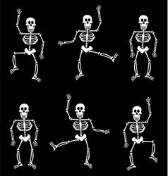 Halloween Skeleton Pattern Black Background vector image