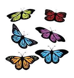 Colored butterflies vector