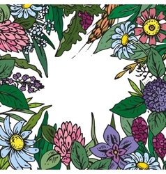 frame with wildflowers and herbs vector image vector image