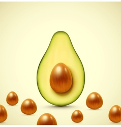 Half an avocado vector image