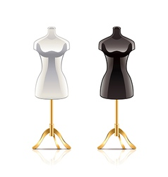 mannequin isolated vector image vector image