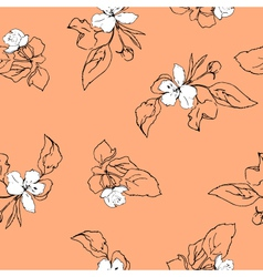 appleblossoms vector image vector image