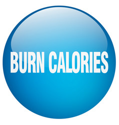 Burn calories blue round gel isolated push button vector