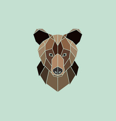 brown bear portrait vector image vector image