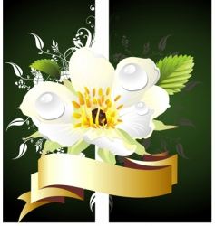 spring card with floral backgr vector image vector image