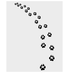 Footprints of dog vector