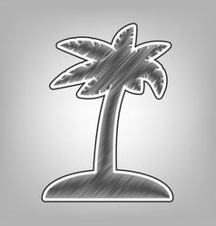 Coconut palm tree sign pencil sketch vector