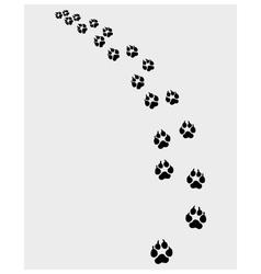 Footprints of dog vector image vector image