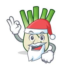 Santa fennel mascot cartoon style vector