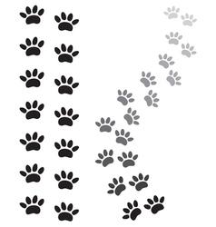Sape paw1 vector image