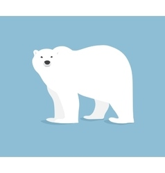 Polar bear hand drawn  flat style vector