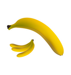 Banana isolated on white background vector