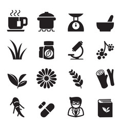 Herb icon set vector