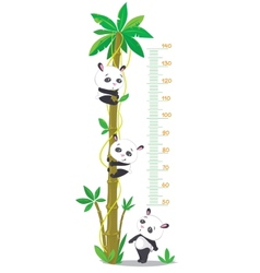 Meter wall with palm tree and three funny pandas vector