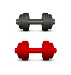 Black and red dumbbells vector image