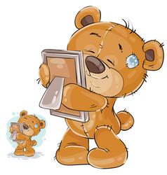 a brown teddy bear misses vector image