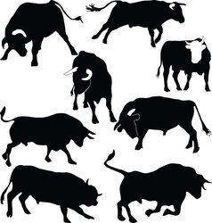 Bulls silhouettes vector image vector image