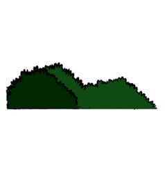 Green grass meadow bush nature image vector