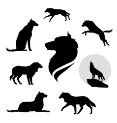 Wolf set vector image vector image