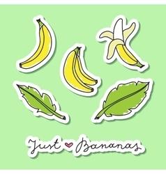 set of bananas vector image
