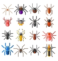 Set of flat spiders cartoon colored icons vector