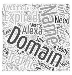 Get traffic with expired domain names word cloud vector