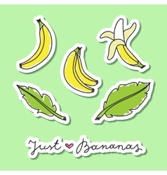 set of bananas vector image vector image