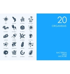 Set of blue hamster library organisms icons vector