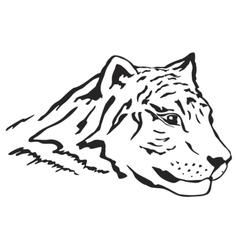 Tiger head vector image vector image