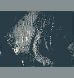 distress overlay background grunge fiber texture vector image