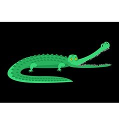 Crocodile isolated Good caiman Wild animal Green vector image vector image