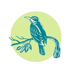 Kingfisher perching on branch woodcut vector