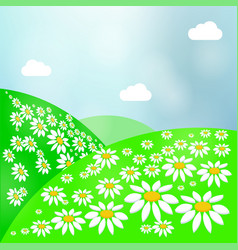 Summer landscape with green grass sun and clear vector